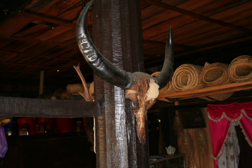 Horns mounted in Rumah Tuo.