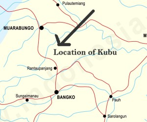 Visited the Kubu just south of Muarabungo, and north of the villages of Rantau Panjang.