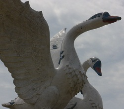 Angso Duo (2 geese), as found by the Governor's Offices.
