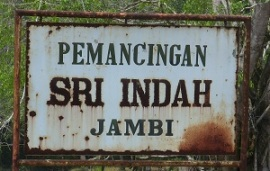 Location for Fishing in Jambi.Taman Sri Indah
