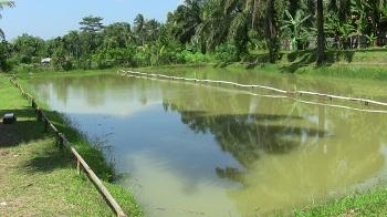 Pemancingan Lesehan Adit