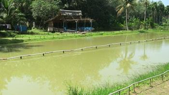 Pemancingan Lesehan Adit, located in the village of Bajubang Darat.
