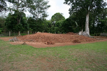 Ruins of An Ancient Temple(Candi Pematang Jering)