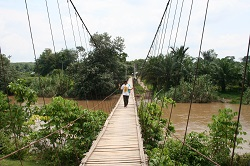 Bridge Over the Tabir River