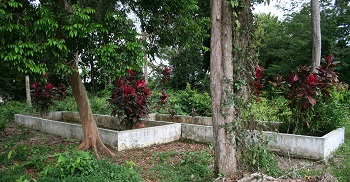 Graves said to contain the remains of a Sacred Tall Sheik, and his wife Kemuning.