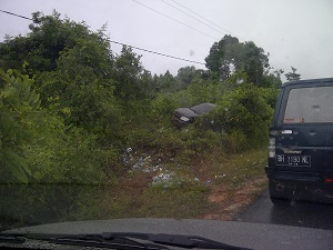 A car that lost control and went up into the brush.